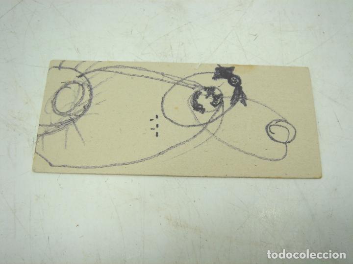 Cajas de Cerillas: COLECCION 23X CERILLAS PLANCHA - PAJAROS - DE CAJAS FOSOFORERA ESPAÑOLA CAJA - Foto 6 - 112962943