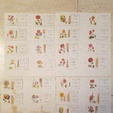 Cajas de Cerillas: 30 CROMOS FOSFORERA ESPAÑOLA CAJAS DE CERILLAS FOSFORO FLORES DE JARDIN ANTIGUAS. Lote 119555411