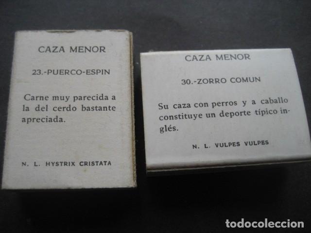 Cajas de Cerillas: 6 CAJAS DE CERILLAS CAZA MENOR. FOSFORERA ESPAÑOLA S.A. - Foto 7 - 130665453