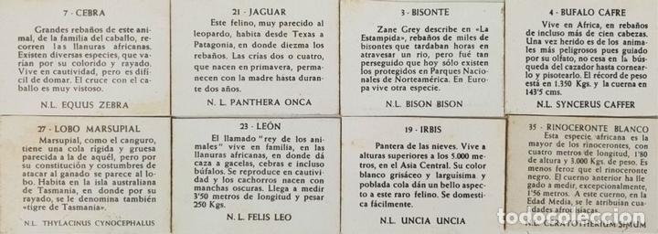 Cajas de Cerillas: COLECCIÓN DE 38 CROMOS. CAJAS DE CERILLAS. SERIE ANIMALES. SIGLO XX. - Foto 3 - 132291830