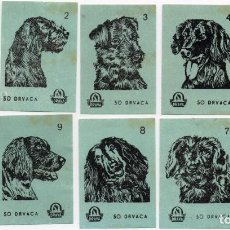 Cajas de Cerillas: TAPAS DE CAJAS DE CERILLAS, SERIE PERROS, 10 UNIDADES COMPLTA. Lote 135138182