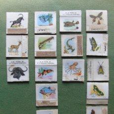 Cajas de Cerillas: 16 CAJAS DE CERILLAS COLECCIÓN .SERIE 2 . MARIPOSAS, FAUNA MARINA, FAUNA FLUVIAL, Y ANIMALES. Lote 135750714