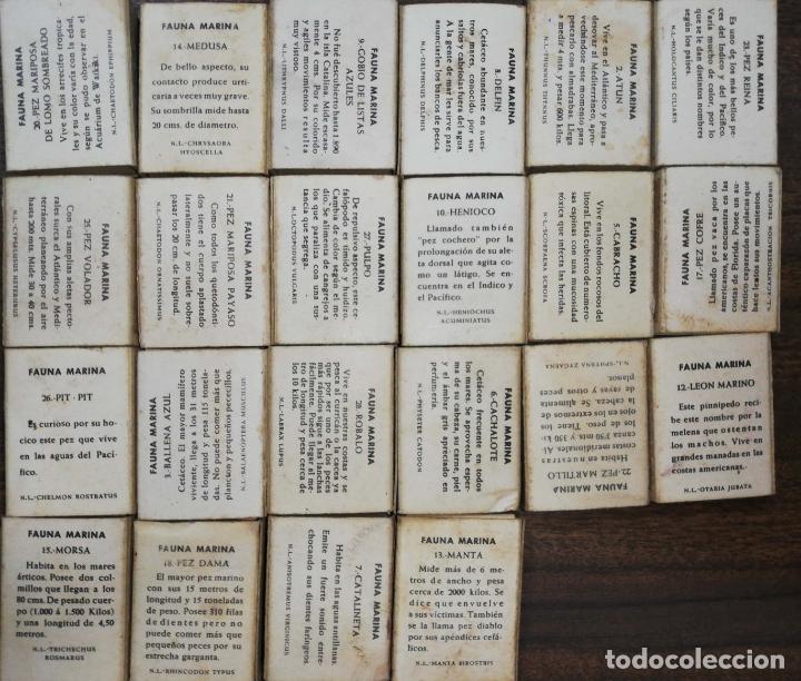 Cajas de Cerillas: LOTE DE 22 CAJA DE CERILLAS. FOSFORERA ESPAÑOLA. MAYORIA VACIAS. FAUNA MARINA. - Foto 2 - 178177121