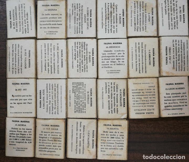 Cajas de Cerillas: LOTE DE 22 CAJA DE CERILLAS. FOSFORERA ESPAÑOLA. MAYORIA VACIAS. FAUNA MARINA. - Foto 4 - 178177121
