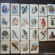 Cajas de Cerillas: LOTE DE 22 CAJA DE CERILLAS. FOSFORERA ESPAÑOLA. MAYORIA VACIAS. FAUNA MARINA.. Lote 178177121