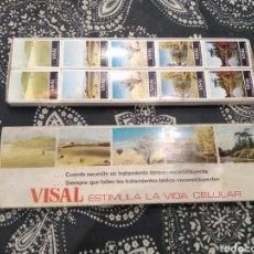 Cajas de Cerillas: CAJA CON 10 CAJAS DE CERILLAS. Lote 183360622