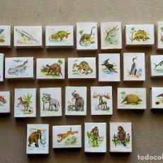 Cajas de Cerillas: CAJAS DE CERILLAS ANIMALES PREHISTORICOS (DIFERENTES ERAS): 25 CAJAS DISTINTAS - FOSFORERA ESPAÑOLA. Lote 194678440