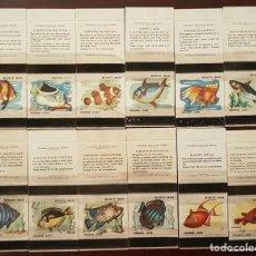 Cajas de Cerillas: COLECCION 12 CAJAS DE CERILLAS PECES FOSFORERA PORTUGUESA. Lote 194968058