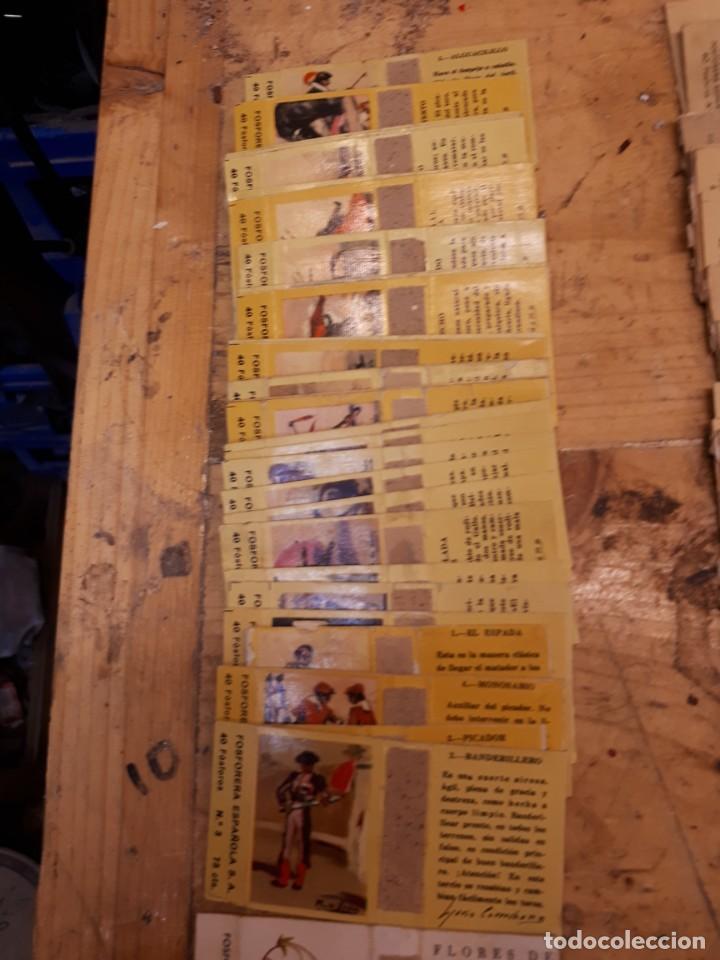 Cajas de Cerillas: Colección cajas cerillas, diversas colecciones. - Foto 3 - 203297830