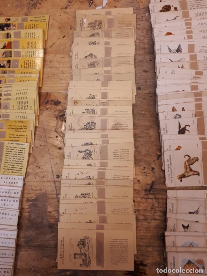 Cajas de Cerillas: Colección cajas cerillas, diversas colecciones. - Foto 5 - 203297830