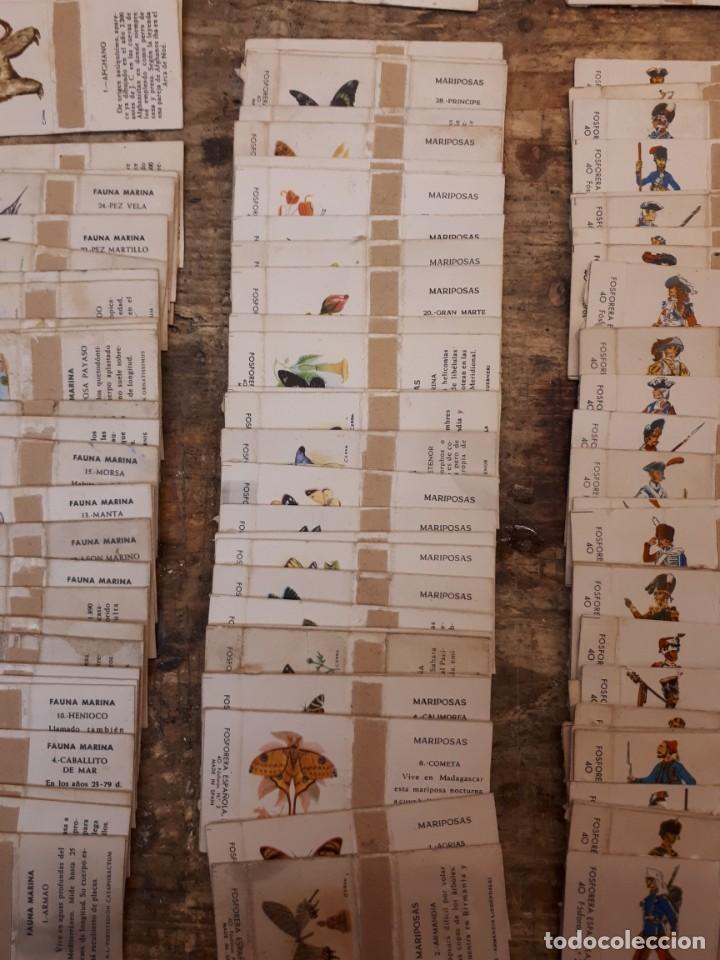 Cajas de Cerillas: Colección cajas cerillas, diversas colecciones. - Foto 10 - 203297830