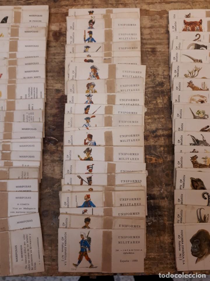 Cajas de Cerillas: Colección cajas cerillas, diversas colecciones. - Foto 12 - 203297830