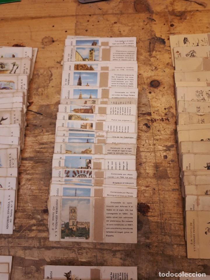 Cajas de Cerillas: Colección cajas cerillas, diversas colecciones. - Foto 13 - 203297830
