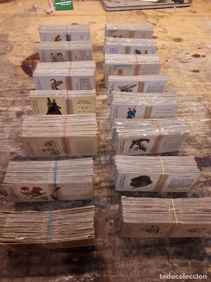 Cajas de Cerillas: Colección cajas cerillas, diversas colecciones. - Foto 18 - 203297830