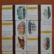 Cajas de Cerillas: PEQUEÑO LOTE : COLECCIÓN 8 CARONÉS DE CAJA DE CERILLAS. Lote 221999922