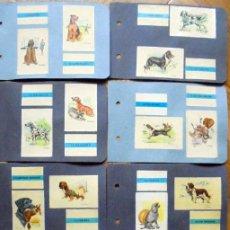 Cajas de Cerillas: PERROS.FOSFORERA ESPAÑOLA, CAJAS DE CERILLAS (TAPAS) - AÑO 1964.COMPLETA. Lote 222592022