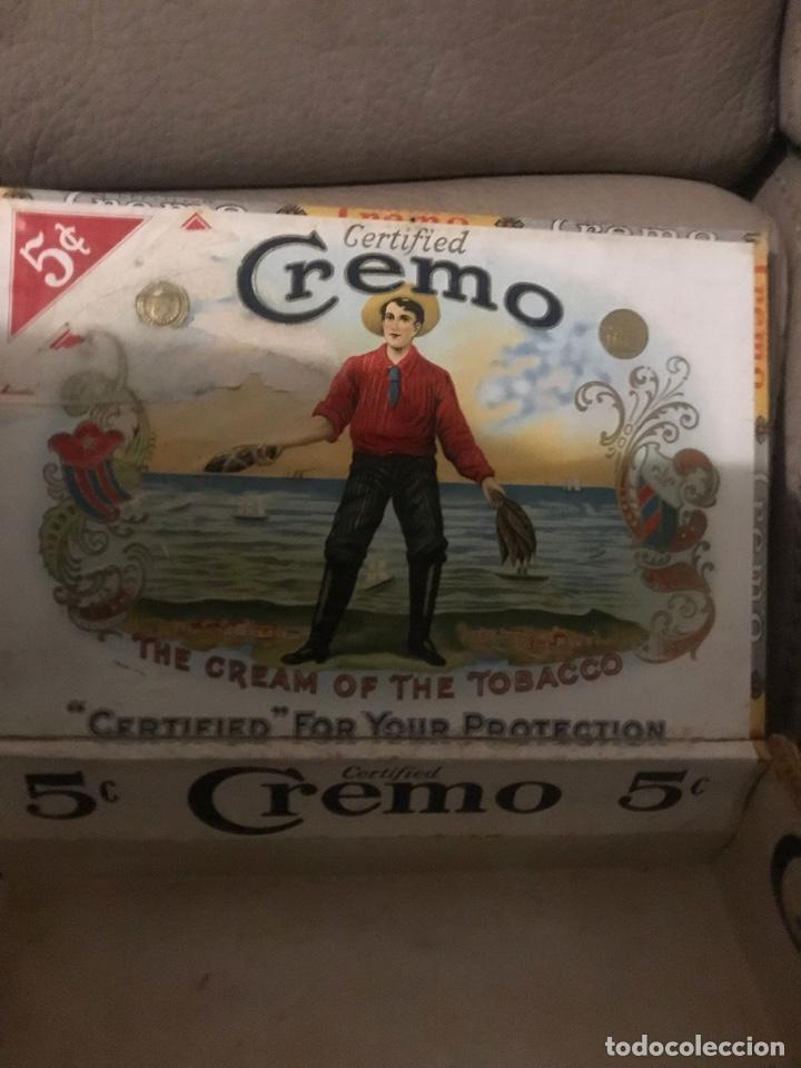 Cajas de Cerillas: ANTIGÜA CAJA DE PUROS EN MADERA - Foto 3 - 236368600
