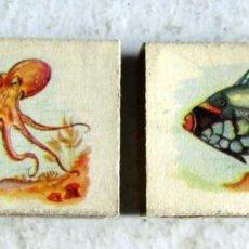 Cajas de Cerillas: 2 CAJAS DE 45 X 18 X 1 MM-TEMA FAUNA. Lote 243959290