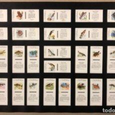 Cajas de Cerillas: LÁMINA CON 30 TAPAS CERILLAS COLECCIÓN FAUNA FLUVIAL (SERIE COMPLETA). FOSFORERA ESPAÑOLA.. Lote 265181759