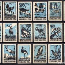 Cajas de Cerillas: 18 ETIQUETAS TAPAS DE CAJAS CERILLAS * CHECOSLOVAQUIA ANIMALES. Lote 269833693