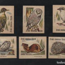 Cajas de Cerillas: 5 ETIQUETAS TAPAS DE CAJAS CERILLAS * CHECOSLOVAQUIA ANIMALES. Lote 269833973