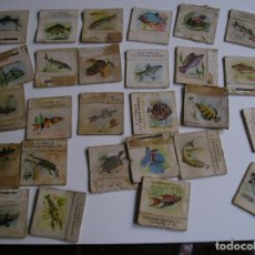 Cajas de Cerillas: LOTE 27 CAJA CERILLAS AÑOS 60 FAUNA PLUVIAL. Lote 274283808
