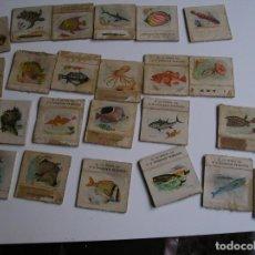 Cajas de Cerillas: LOTE 22 CAJA CERILLAS AÑOS 60 FAUNA MARINA. Lote 274284208
