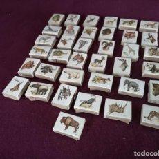 Cajas de Cerillas: COLECCIÓN DE CAJAS DE CERILLAS CON DIBUJOS DE ANIMALES SALVAJES, FOSFORERA ESPAÑOLA, 37 UNIDADES. Lote 292290768