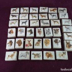 Cajas de Cerillas: COLECCIÓN DE CAJAS DE CERILLAS CON DIBUJOS DE PERROS, FOSFORERA ESPAÑOLA, 38 UNIDADES. Lote 292291013