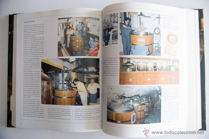 Coleccionismo de cervezas: LIBRO GUÍA DE CERVEZAS DEL MUNDO LES BIERES DU MONDE ED. HATIER EN FRANCÉS - Foto 9 - 45081285