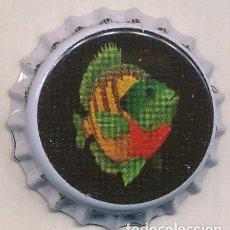 Coleccionismo de cervezas: ESTADOS UNIDOS - UNITED STATES - CHAPAS - CROWN CAPS BOTTLE CAPS KRONKORKEN CAPSULES TAPPI. Lote 199079807
