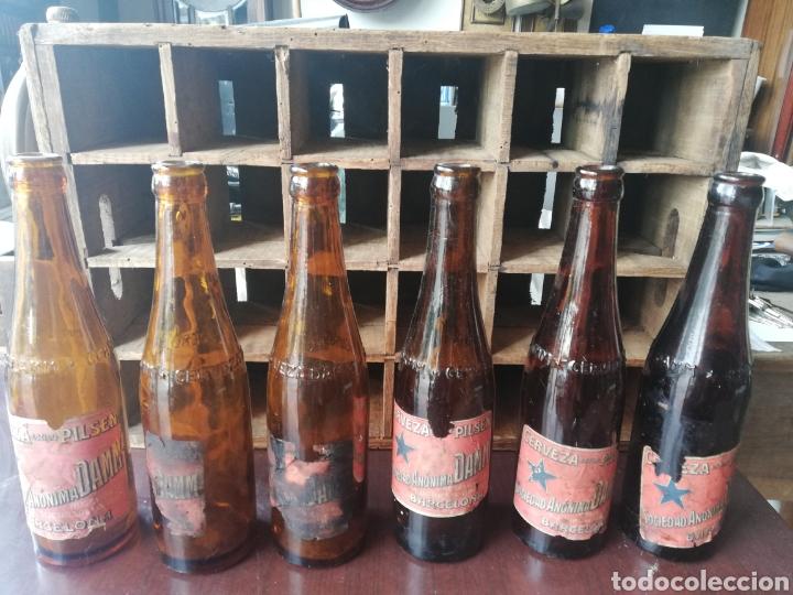 Coleccionismo de cervezas: Caja completa Sociedad Anonima Damm, Estilo Pilsen, original - Foto 2 - 270230663
