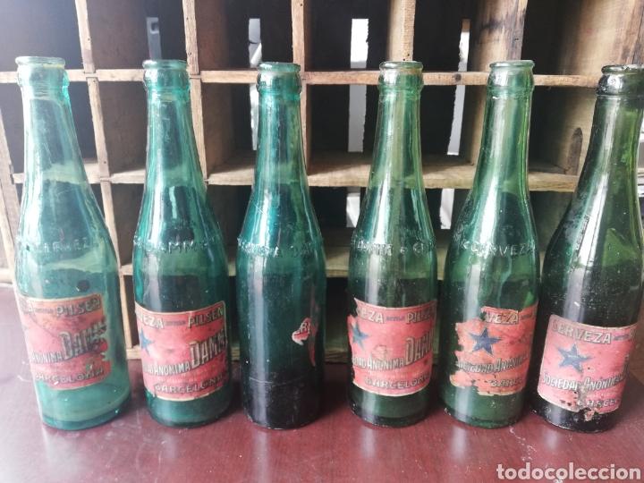Coleccionismo de cervezas: Caja completa Sociedad Anonima Damm, Estilo Pilsen, original - Foto 8 - 270230663