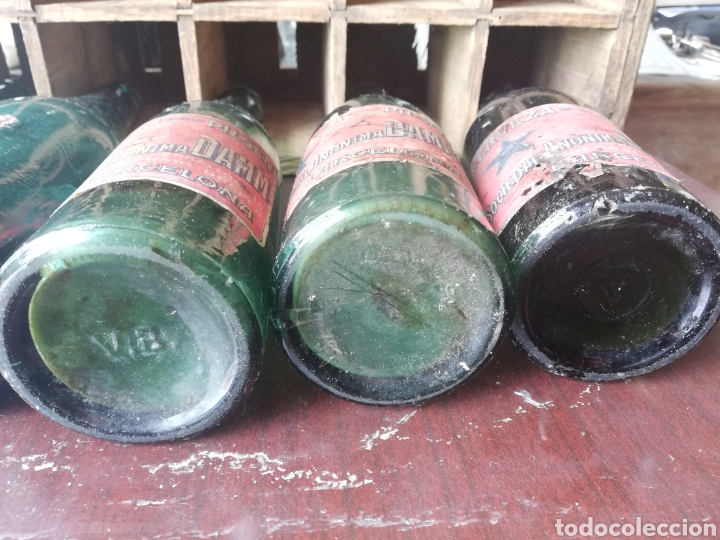 Coleccionismo de cervezas: Caja completa Sociedad Anonima Damm, Estilo Pilsen, original - Foto 10 - 270230663