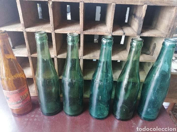 Coleccionismo de cervezas: Caja completa Sociedad Anonima Damm, Estilo Pilsen, original - Foto 11 - 270230663