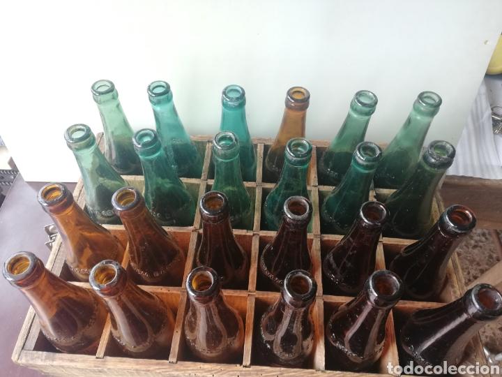 Coleccionismo de cervezas: Caja completa Sociedad Anonima Damm, Estilo Pilsen, original - Foto 13 - 270230663