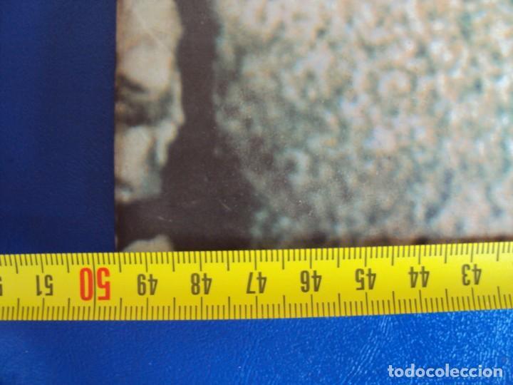 Coleccionismo de Coca-Cola y Pepsi: (CAR-201100)CARTEL PUBLICITARIO COCA-COLA DA MAS CHISPA - AÑOS 70-80 - Foto 4 - 223692298