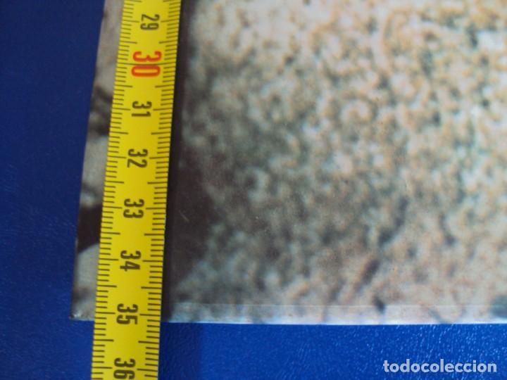 Coleccionismo de Coca-Cola y Pepsi: (CAR-201100)CARTEL PUBLICITARIO COCA-COLA DA MAS CHISPA - AÑOS 70-80 - Foto 5 - 223692298