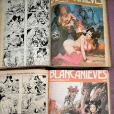 Cómics: DOS TOMOS BLANCANIEVES Y LOS SIETE ENANOS VICIOSOS 50 NUMEROS DEL 1 AL 50 INCLUIDOS. Lote 219734376