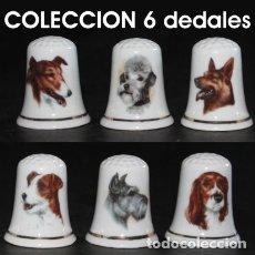 Coleccionismo de dedales: DEDAL PORCELANA - PERROS (COLECCIÓN DE 6 DEDALES). Lote 246819505