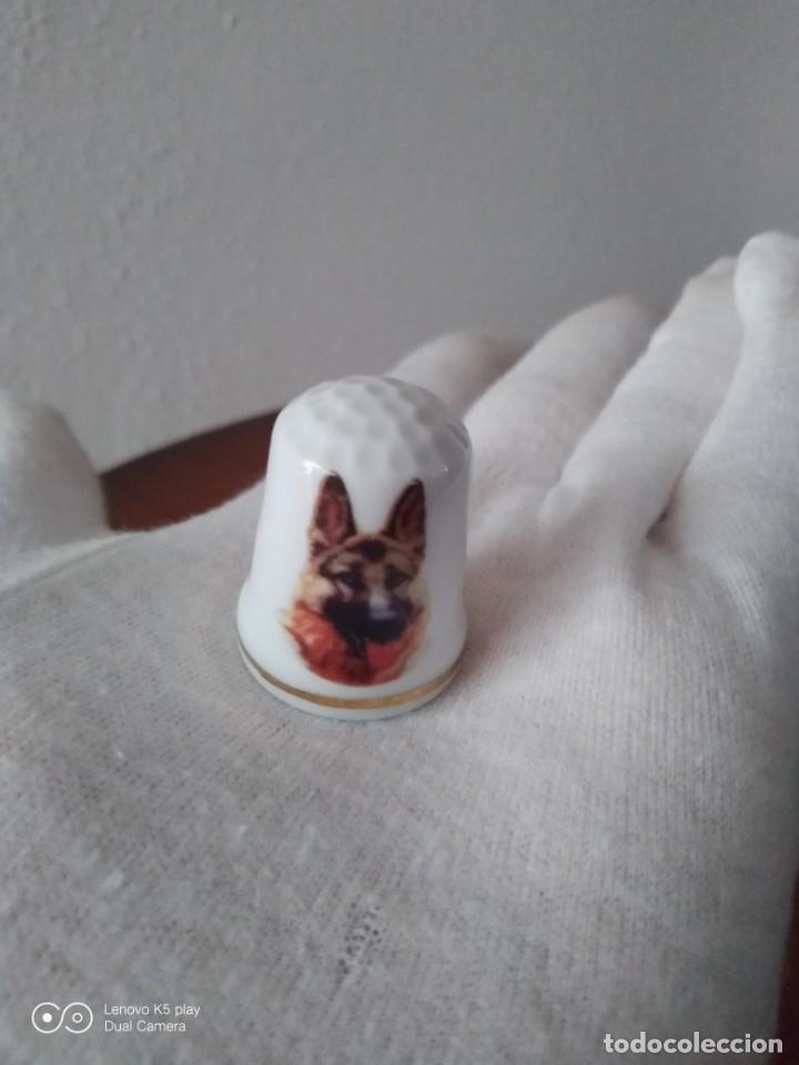 Coleccionismo de dedales: Dedal porcelana Pastor Alemán - Foto 2 - 194649915