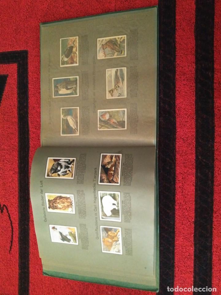 Coleccionismo deportivo: Artículo extraordinario. Álbum cromos Juegos Olímpicos JJOO 1928. Sociedad, cultura y deporte. - Foto 10 - 166161490
