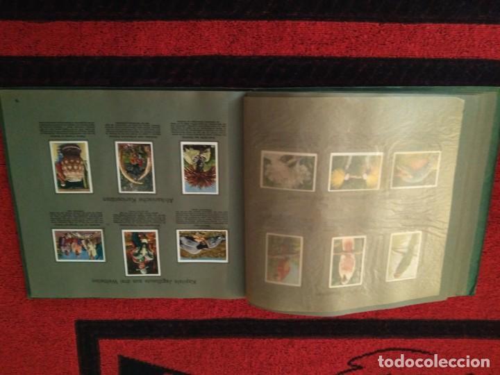Coleccionismo deportivo: Artículo extraordinario. Álbum cromos Juegos Olímpicos JJOO 1928. Sociedad, cultura y deporte. - Foto 30 - 166161490