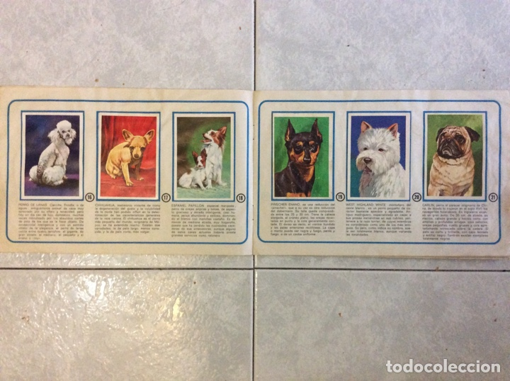 Coleccionismo deportivo: Álbum de cromos tu mejor amigo el perro completo - Foto 5 - 219891055