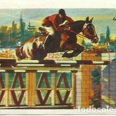 Coleccionismo deportivo: CROMOS DE HIPICA - FOTOS. Lote 268846629