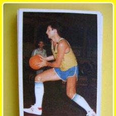 Coleccionismo deportivo: CROMO PEGATINA MERCHANTE CONVERSE, BALONCESTO 87-88, CACAOLAT - J FERNÁNDEZ - 16. Lote 45896267