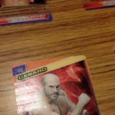 Coleccionismo deportivo: FICHA TRADING CARD LUCHA LIBRE PANINI W WWE Nº 066. Lote 98509195