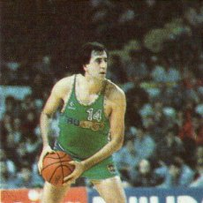 Coleccionismo deportivo: BALONCESTO 88 - CROMO Nº 109 - J.A. QUEREJETA (TAUGRÉS) - EDITORIAL J. MERCHANTE - NUNCA PEGADO.. Lote 288187908