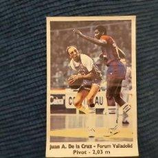 Coleccionismo deportivo: BASKET 88-89 BOLLYCAO NUNCA PEGADO FORUM VALLADOLID DE LA CRUZ CON CHICHO SIBILIO BARCELONA 69. Lote 196664036