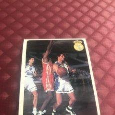 Collezionismo sportivo: LIGA ACB 95-96 95 96 MUNDICROMO SPORT Nº 45 MARTIN FERRER REAL MADRID. Lote 206274586
